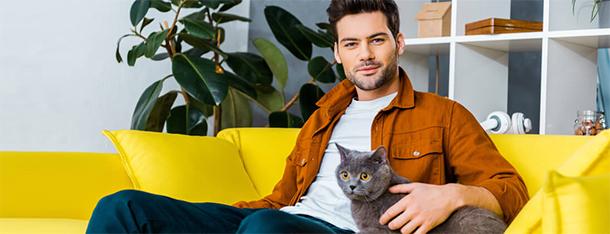Zalety posiadania kota – to przekona każdego sceptyka!