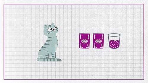 Yavru kediler ne zaman yetişkin maması yiyebilir?