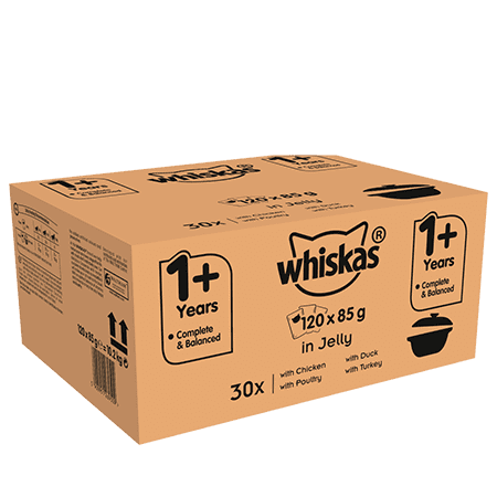 Whiskas Casserole 1+ Wet Cat Food for Adult Cats Poultry Selection in Jelly, 120 Pouches 120 x 85g